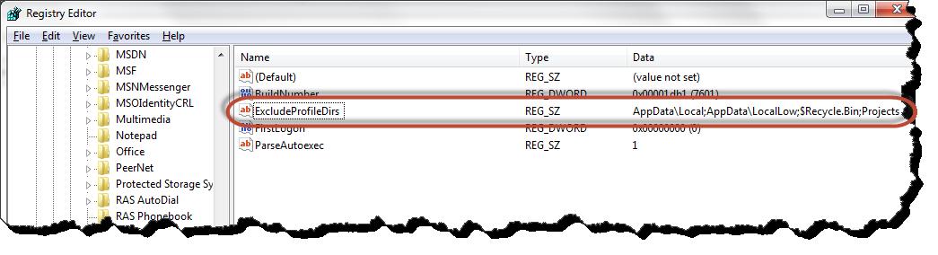 Registry editor ExcludeProileDirs key